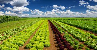 agriculture raisonnee